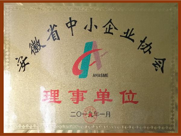 安徽省中小企业协会理事单位.jpg